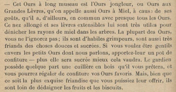 ours - cuillet bois